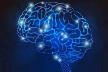 umysł e