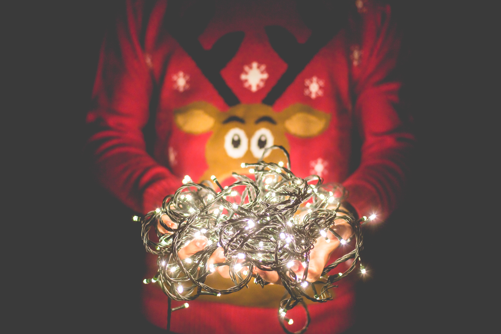 man-in-christmas-sweater-holding-christmas-lights-picjumbo-com