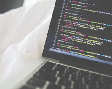programowanie_freepik