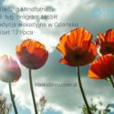 mindfulness mbsr w gdansku lato