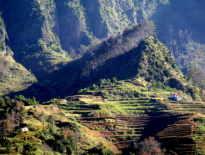 Madera – zobacz zdjęcia, po których zechcesz odwiedzić tę wyspę!